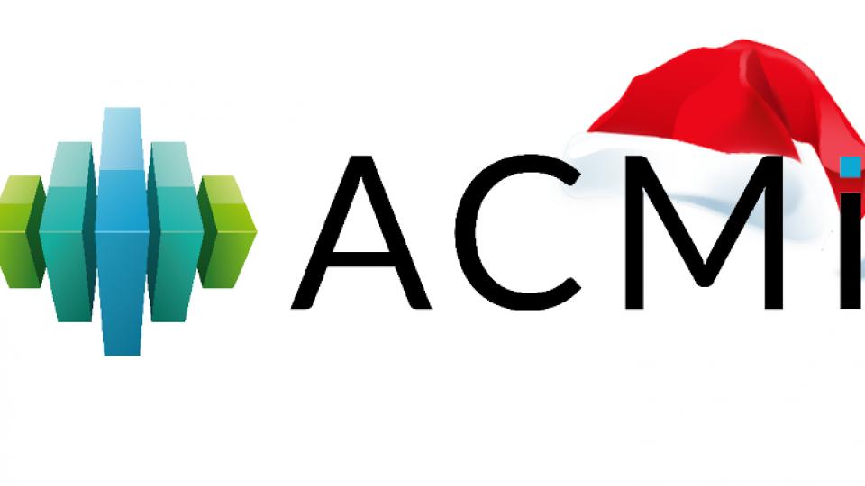 ACMI avec bonnet noel